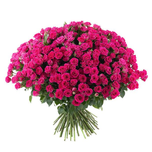 Букет 101 кустовая роза фото