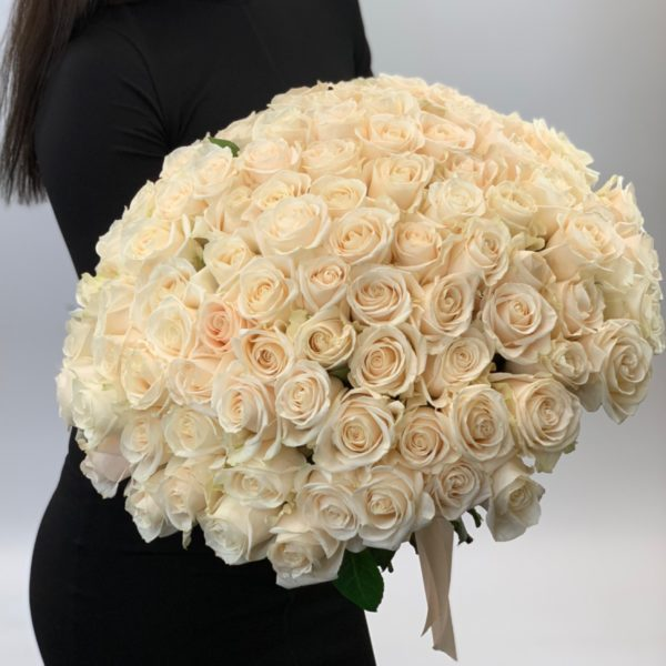 101 белая роза 40 см фото